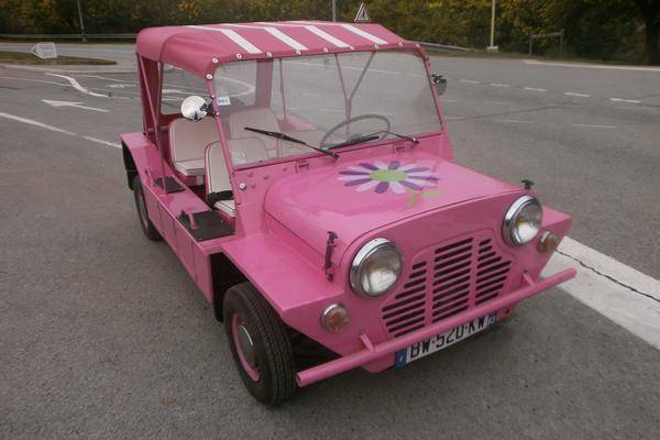 MINI MOKE ROSE